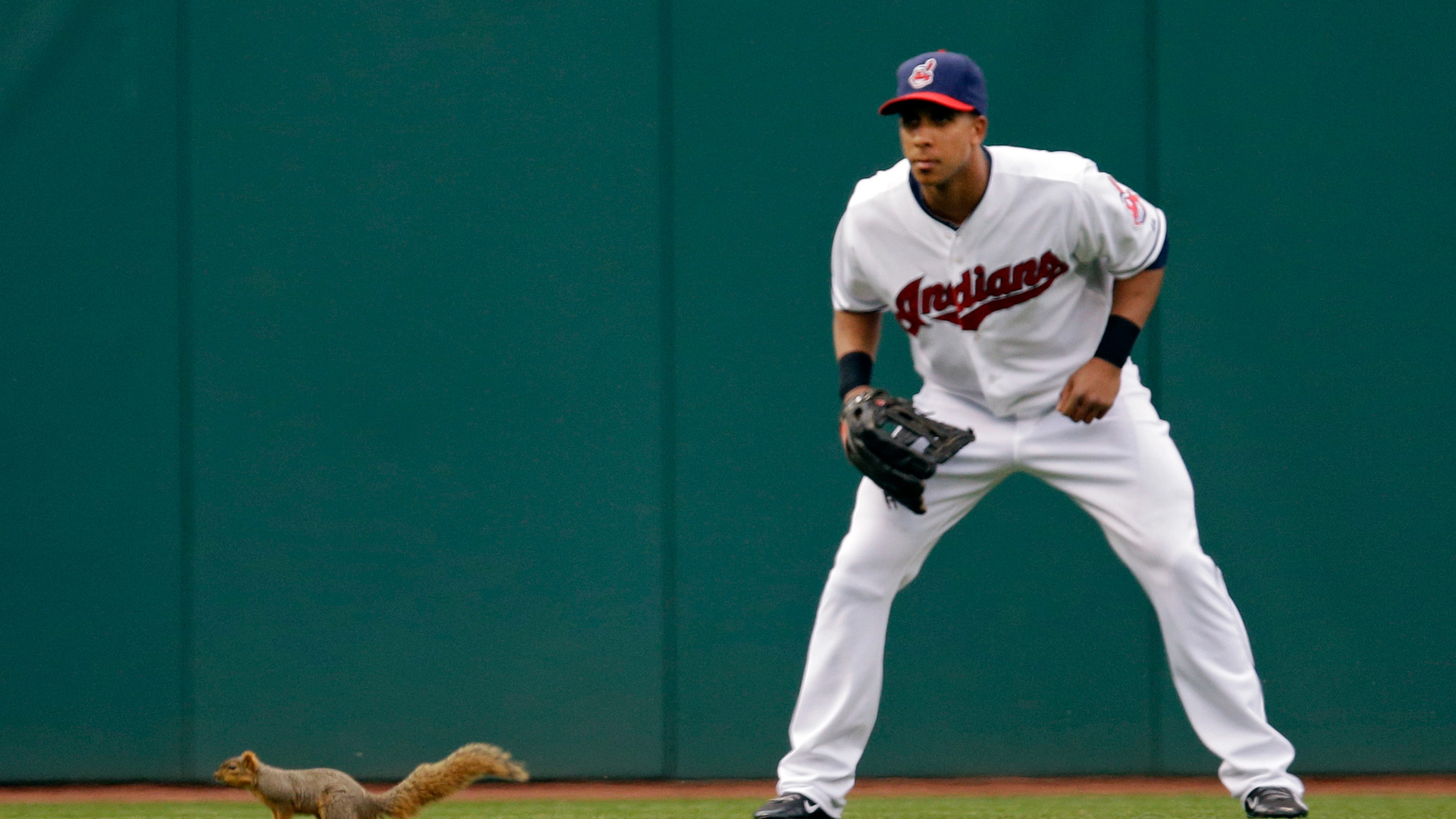 cleveland-indians-squirrel-042114-ap-ftr