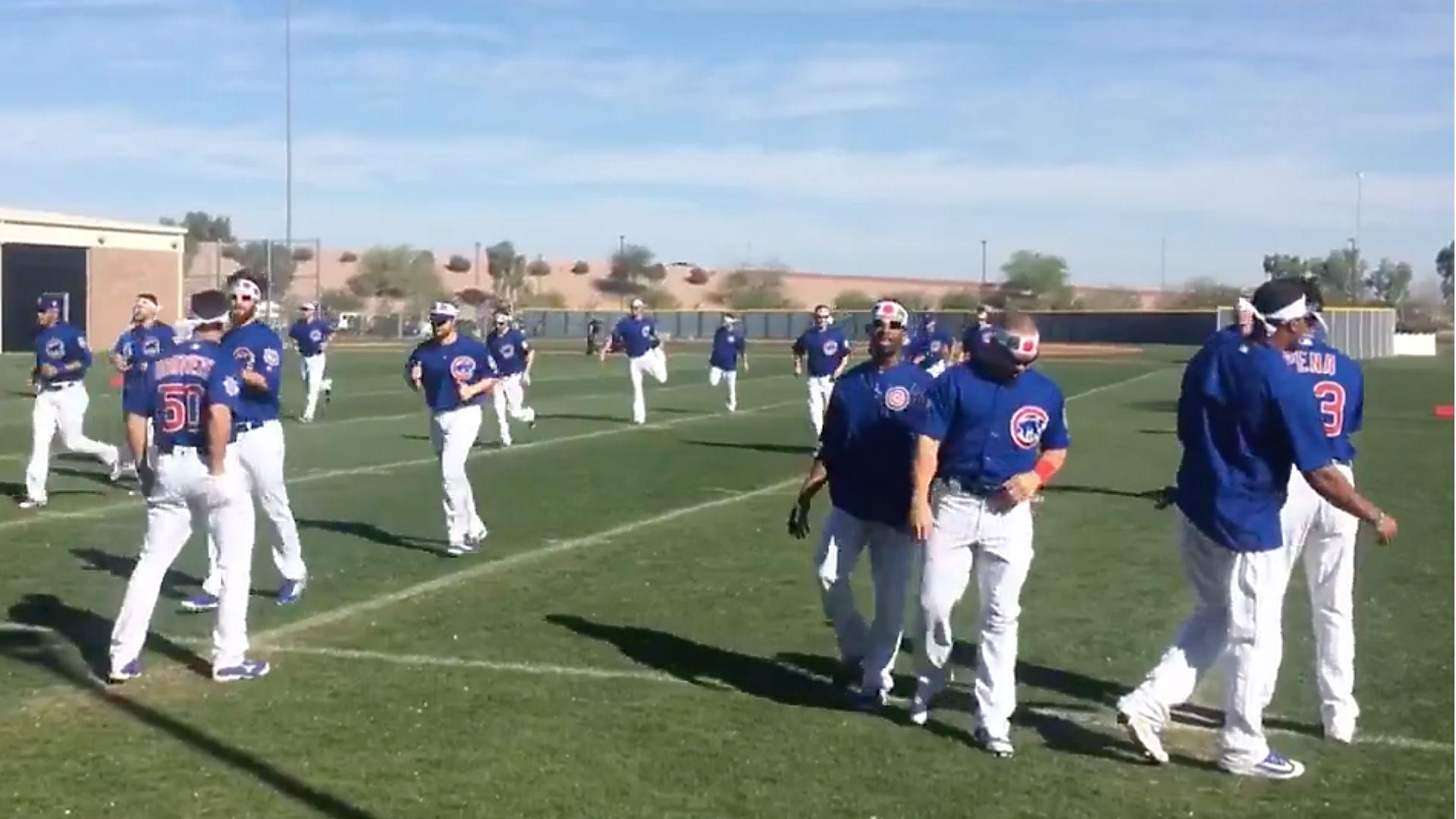 Cubs spring training - FTR