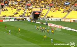 Jacques Faty scored his first goal for Sydney FC with a neat volley against Wellington Phoenix.