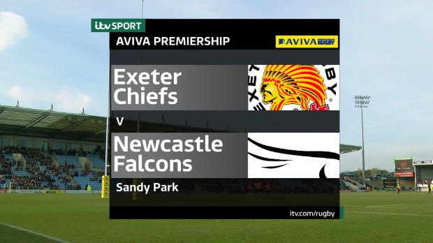 Aviva Premiership - Exeter Chiefs v Newcastle Falcons