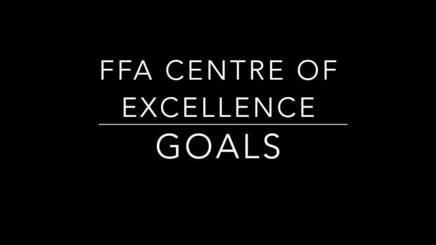 FFA Centre of Excellence Goals 2016