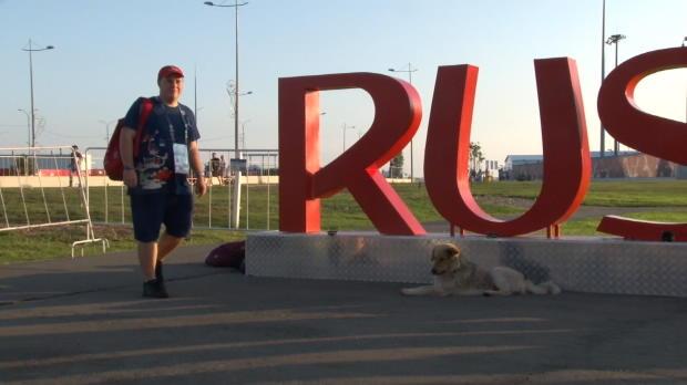 Confed Cup: Tobias, Volunteer aus Leidenschaft