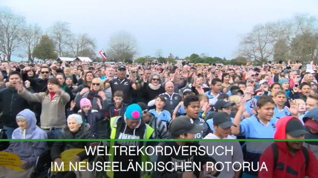 Neuseeland: Tausende bei Haka-Weltrekordversuch