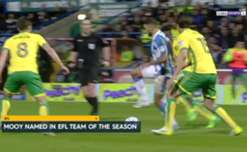 Caltex Socceroo and Huddersfield Town midfielder Aaron Mooy has been selected in the English Football League Team of the Year.