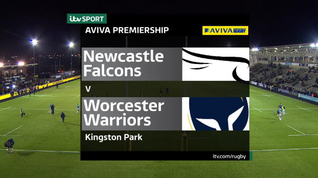 Aviva Premiership - Newcastle Falcons v Worcester Warriors