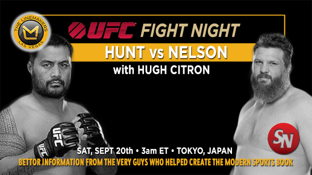 UFC Fight Night Hunt vs Nelson