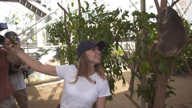 Basket : WTA - Simona Halep prend un selfie avec un koala