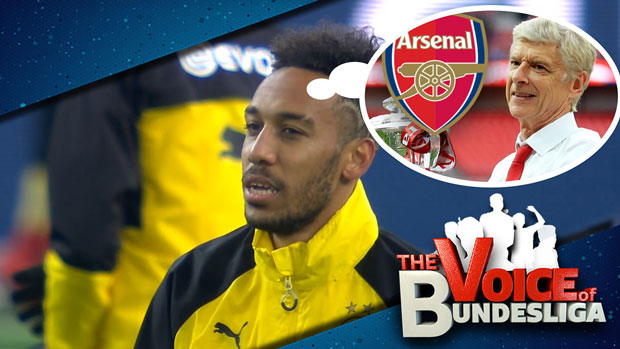 Gaga-Gunners - Voice of Buli