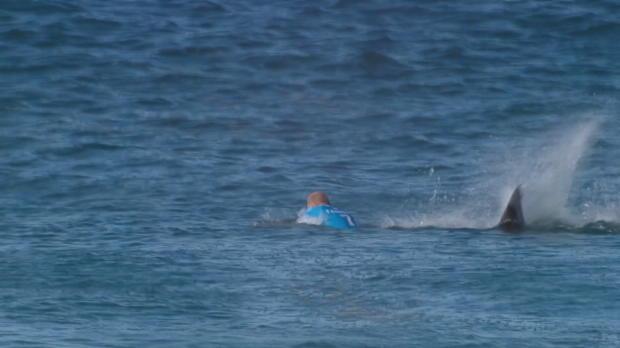 Surfen: Weltmeister wehrt Hai-Attacke ab