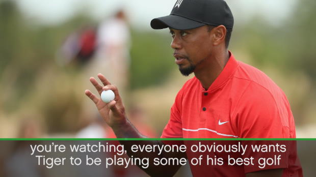 Everyone wants Tiger back to his best - Poulter