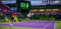 Doha : Berdych rejoint Ferrer en finale