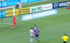 Perth Glory captain Rostyn Griffiths scored a long-range equaliser against the Phoenix at nib Stadium on Thursday night.