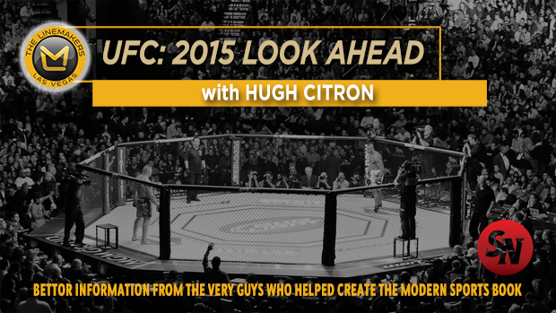 UFC 2015: A Look ahead