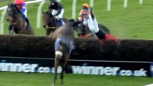 Reiten: Slapstick-Überschlag-Sturz von Pferd