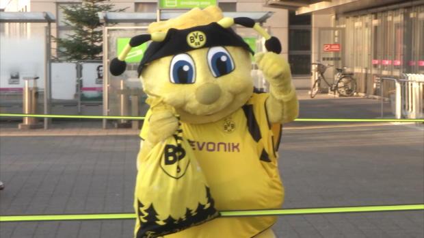 BVB-Maskottchen Emma wird zur Nikolaus-Biene