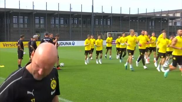 Favre aux commandes de Dortmund