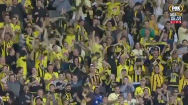 A-League Rd 21 goals wrap