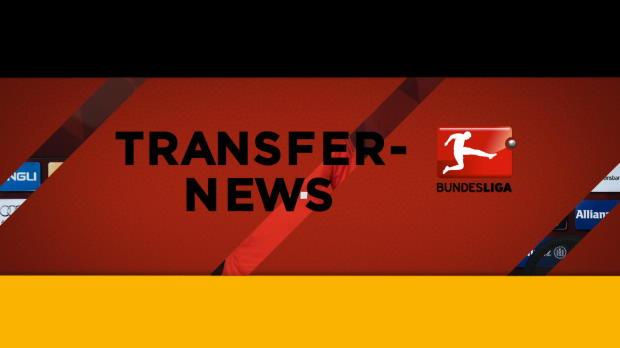 Video transfer news wsv transfer fenster offen for Fenster offen