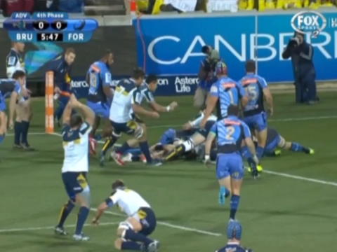 Brumbies finish Force's season