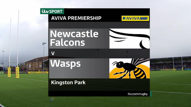 Aviva Premiership - Falcons v Wasps