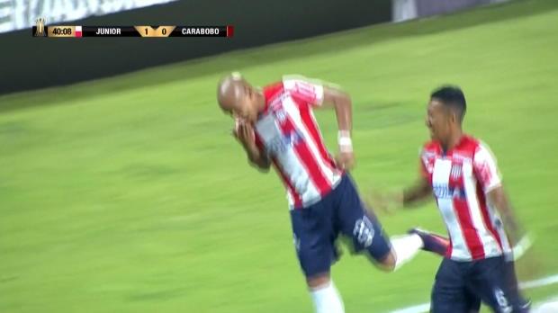 Copa Libertadores: Estrada-Volley ins Glück!