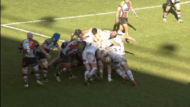 Quins v Warriors