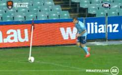 Adelaide keeper Eugene Galekovic put on a virtuoso display in goal against the Sky Blues.
