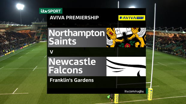 Aviva Premiership - Premiership Rugby - Northampton Saints v Newcastle Falcons