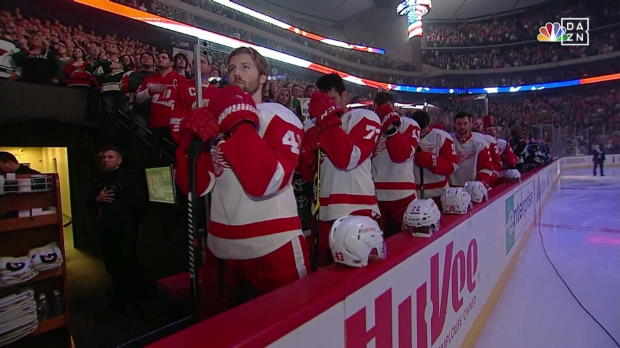 Wild - Red Wings
