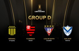 Group D teams