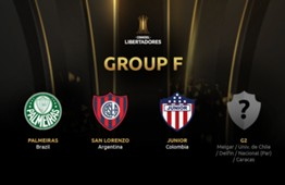 Group F teams