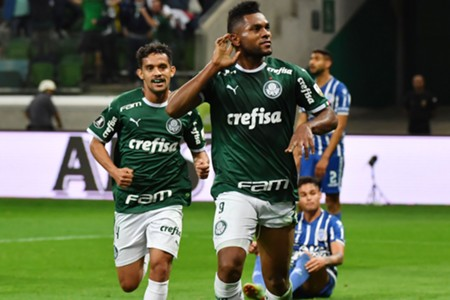 Borja - Palmeiras