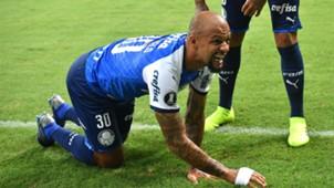 AFP Palmeiras Melgar Copa Libertadores 2019