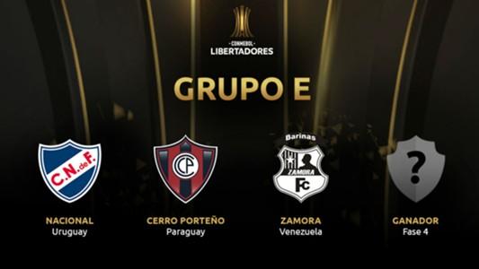 Grupo E Copa Libertadores 2019