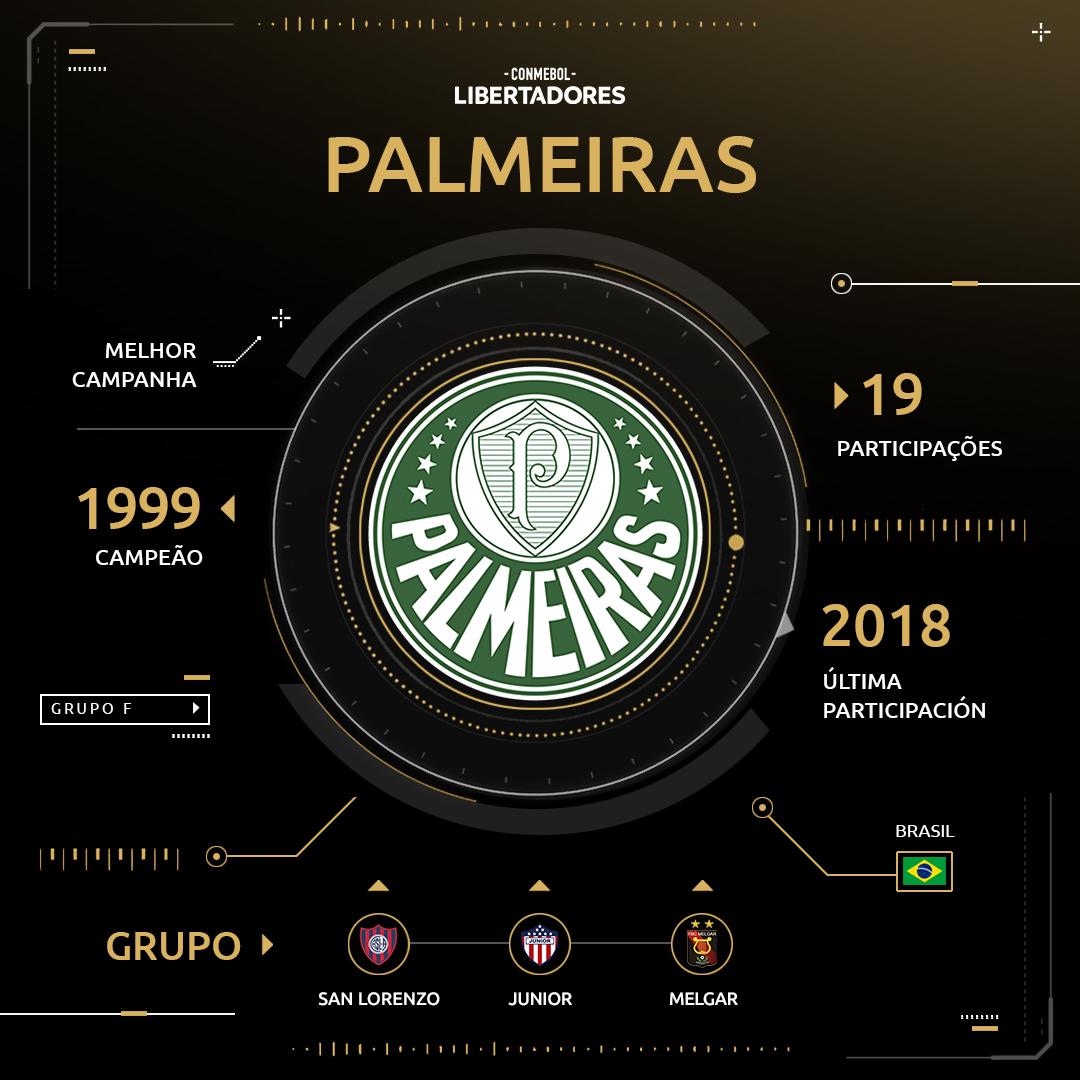 Arte - Palmeiras Libertadores (2)