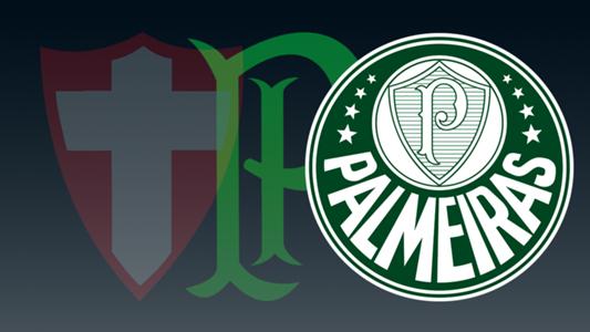 GFX Palestra Italia Palmeiras simbolos