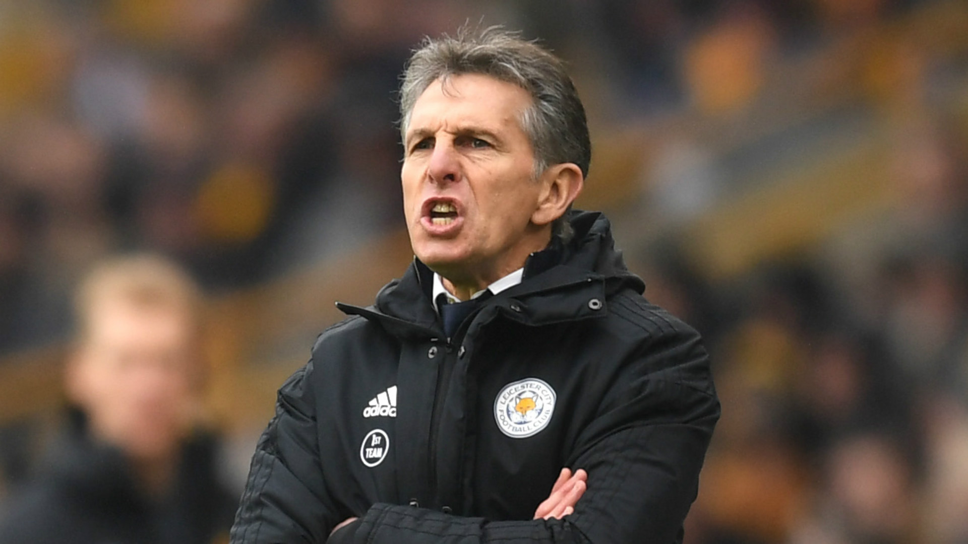 Claude Puel Leicester City 2018-19