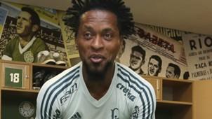 Zé Roberto Palmeiras 27 11 17