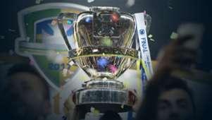 Copa do Brasil trofeu 2017