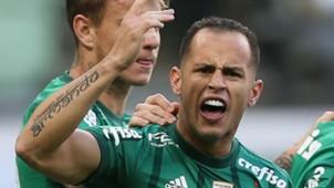 Guerra Palmeiras Fluminense Brasileirão 10 06 2017