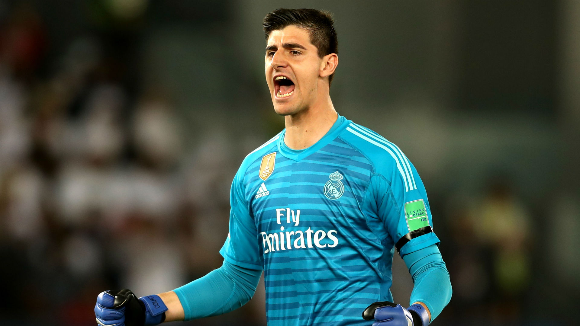 thibaut-courtois-real-madrid-2018-19_89j