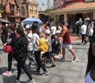 Tevez Disneyland