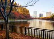 Goal Indonesia Goes To Osaka - Autumn In Osaka