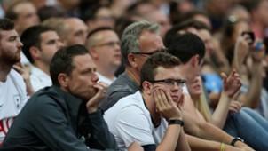 Tottenham Fans 20082017