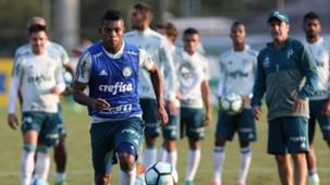 Miguel Borja Palmeiras treino 11052017