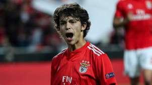 Joao Felix Benfica 2018-19
