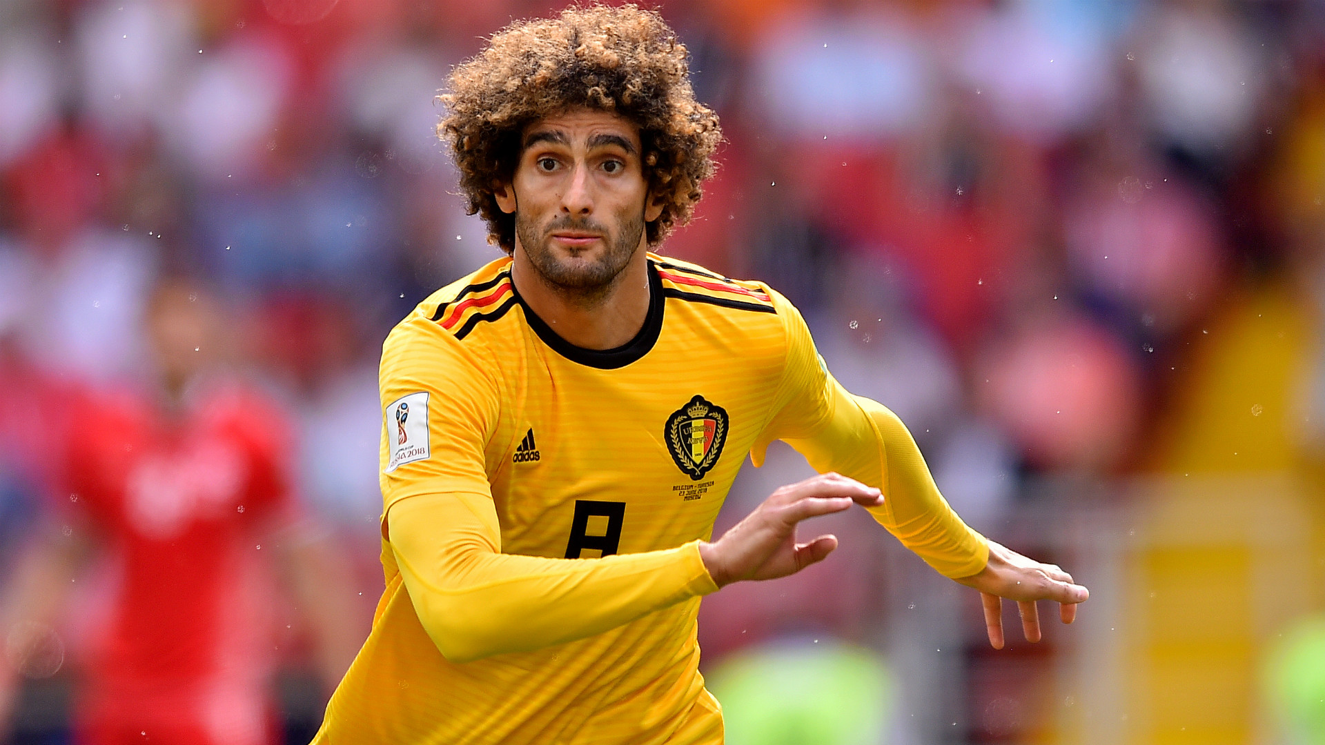 Marouane Fellaini Belgium Tunisia World Cup