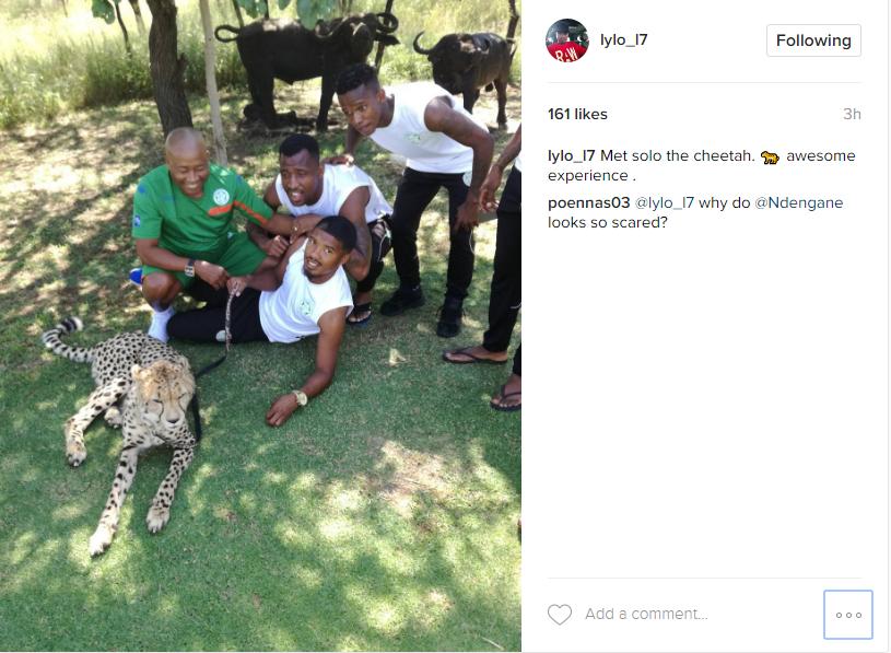 Lyle Lakay with a cheetah