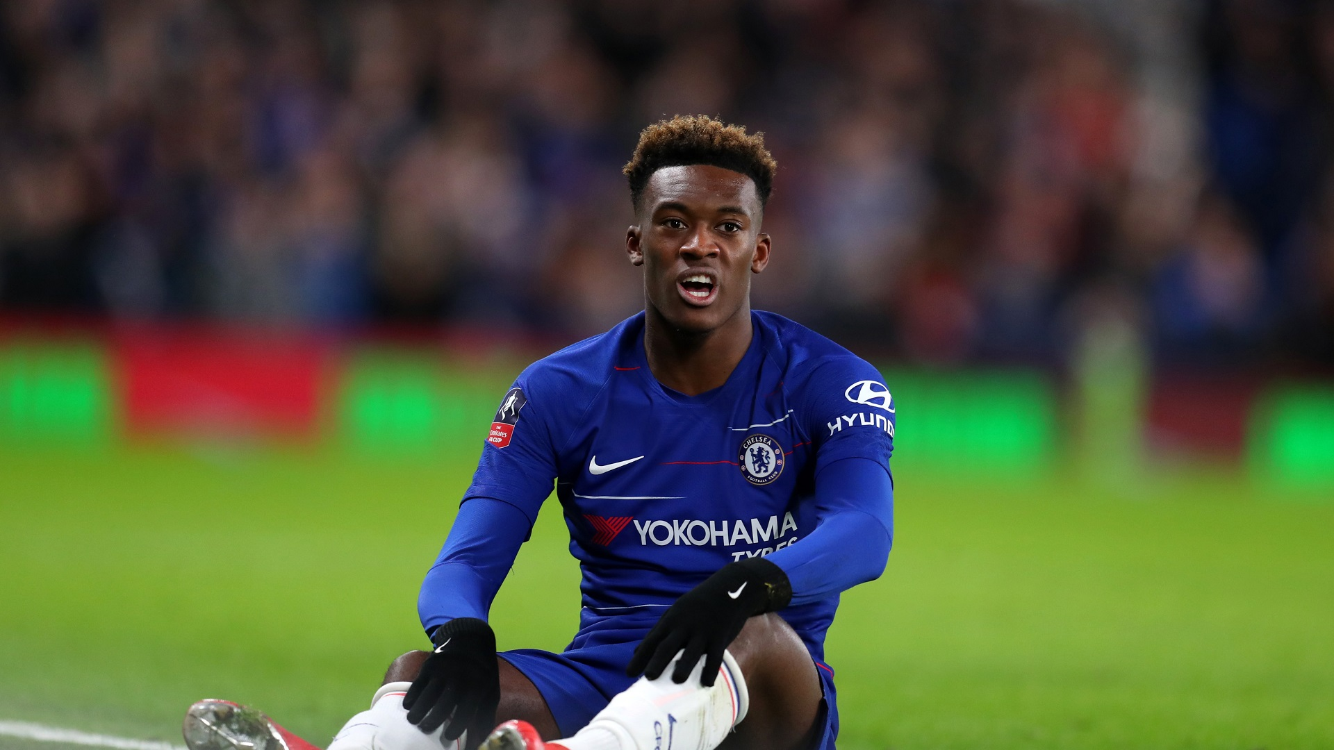 Bayern Munich chief: 'I am not in love with Callum Hudson-Odoi'