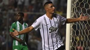 Tacuara Carodozo Libertad gol a Atlético Nacional Copa Libertadores 2019